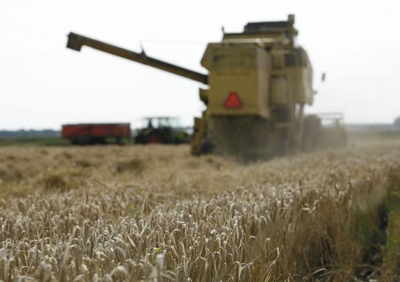США и ЕС озабочены ростом экспорта зерна из России
