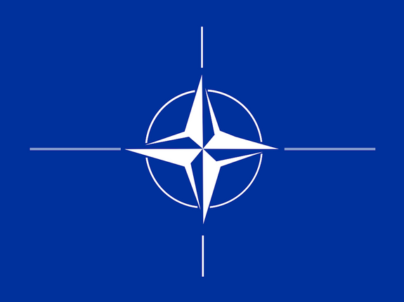 Польша поддержала идею о вступлении Украины и Грузии в НАТО