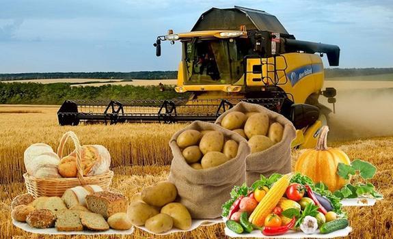 Экспорт еды может принести 22 млрд долларов