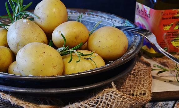 Россиянам не запретят  выращивать на дачах картошку