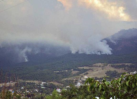 Лесной пожар  в Ялте в ущелье Уч-Кош полностью ликвидирован