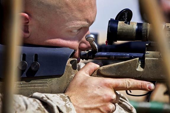 Украина получит от Канады крупную партию снайперских винтовок