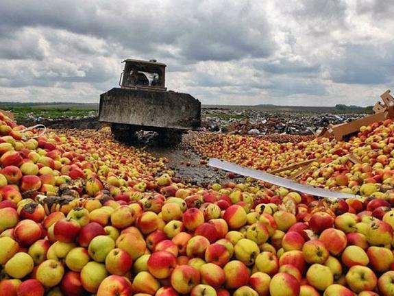 Поляки поняли, что России не нужна их еда
