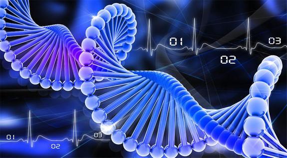 Ученые создали чудо-таблетку, которая способна продлить жизнь до 150 лет