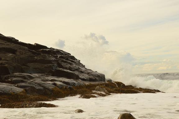 Климатолог объяснил опасность изменения климата для экосистемы Баренцева моря