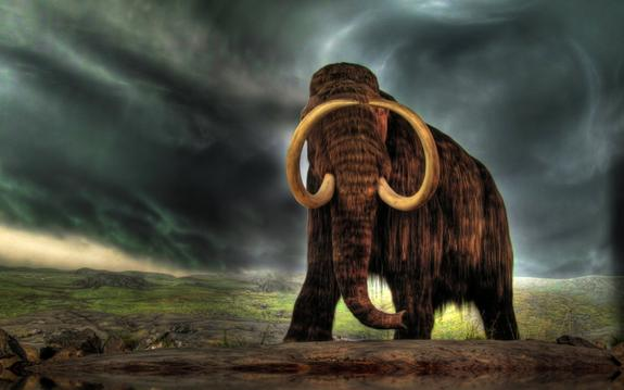 Через 10 лет на Земле вновь появятся мамонты,  обещают ученые