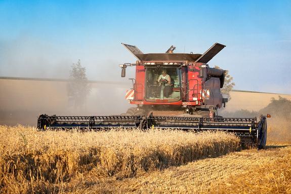 Рекордный урожай пшеницы в России угрожает фермерам в США