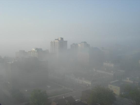 Синоптики: Москва погрузится в густой туман в ночь на пятницу
