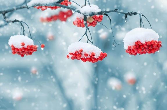 В Раде предложили ввести мораторий на приход зимы