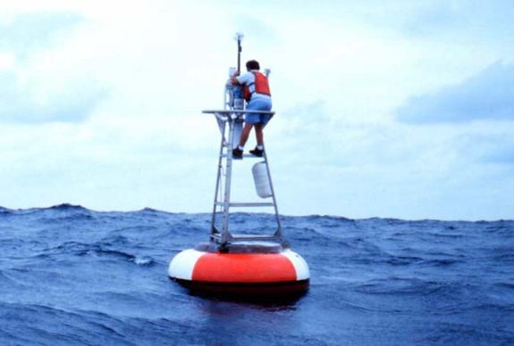 Мировой океан закипает