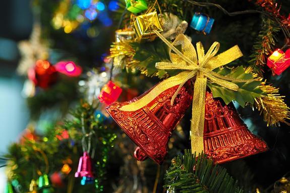 В Белый дом привезли главную рождественскую елку США