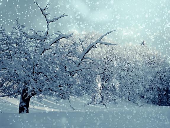 Москву сегодня накроет снегопад