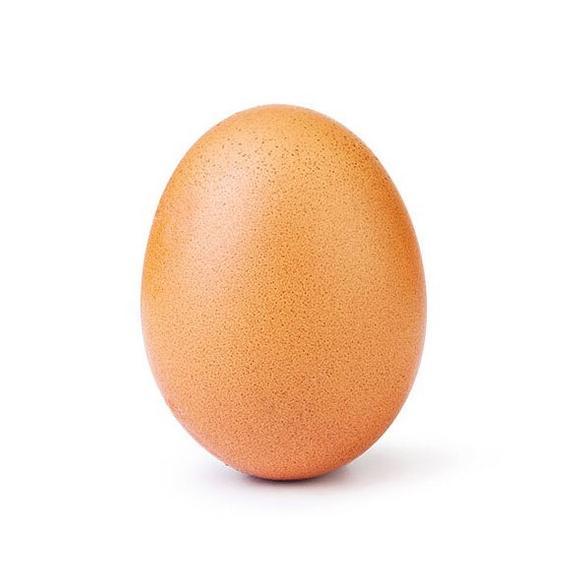 Куриное яйцо стало новой звездой Instagram
