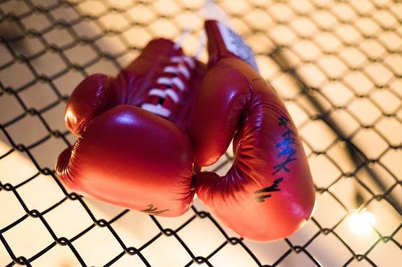 День бокса официально признали международным