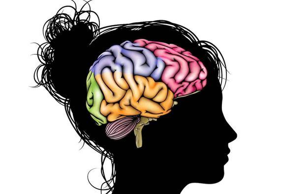 Учёные обнаружили участок мозга,  различающий вкус еды