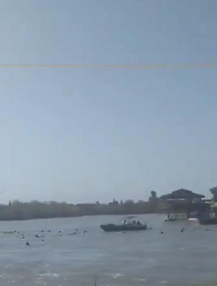 В Ираке на реке Тигр перевернулся паром с туристами, погибли 45 человек