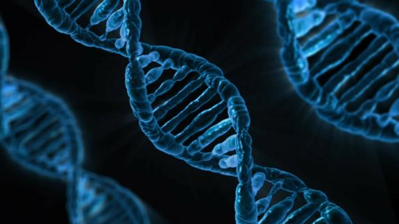 Учёные выяснили, как можно бороться с циррозом печени