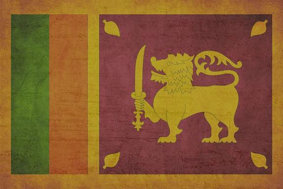 В Шри-Ланке проведут экстренное заседание правительства