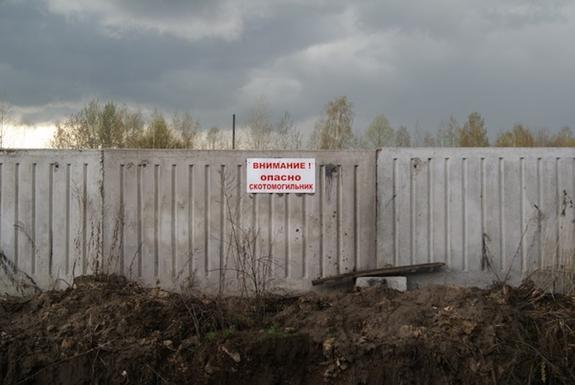 Москве и Волге угрожает сибирская язва из-за вопиющего бездействия тверских властей