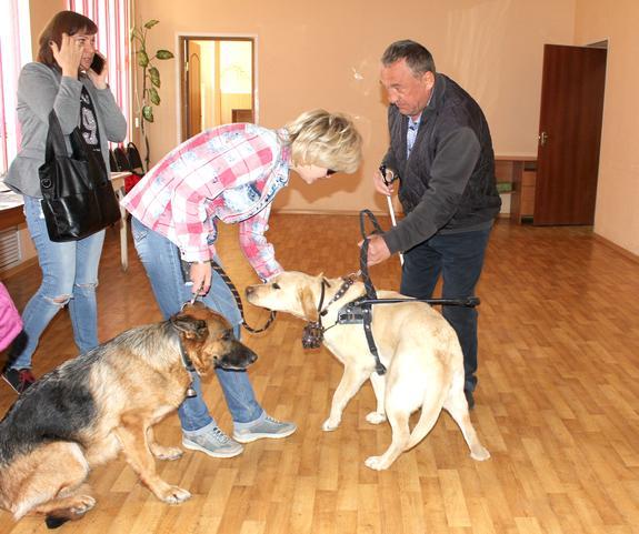 Собак стоимостью в 125 тысяч рублей стали раздавать инвалидам в Волгограде