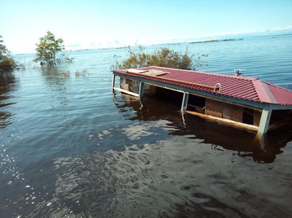 """Вода – и благо и беда: заповедник """"Болоньский"""" восстановят после паводка"""
