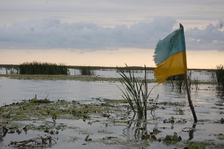 Киев подсчитал площадь захваченных территорий в Донбассе