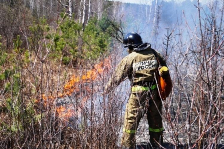 На Южном Урале ликвидировано 150 лесных пожаров