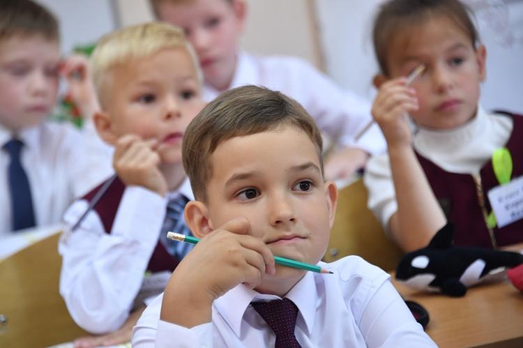 Волынец: родители должны активнее участвовать в жизни детей-школьников