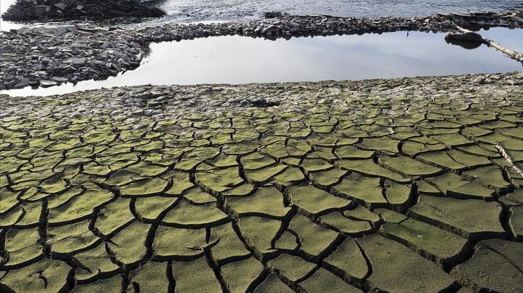 Юрий Лужков рассказал, как бороться с засухой