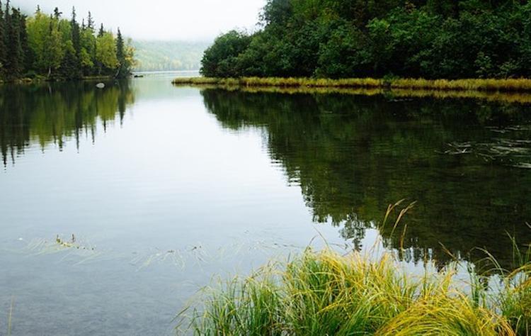 Девочка утонула в реке в Подмосковье