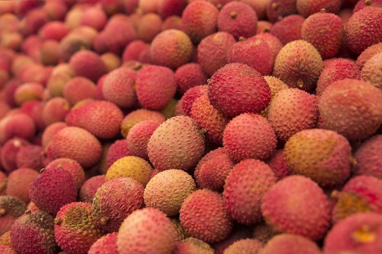Более 50 детей умерли после потребления в пищу плодов личи в Индии
