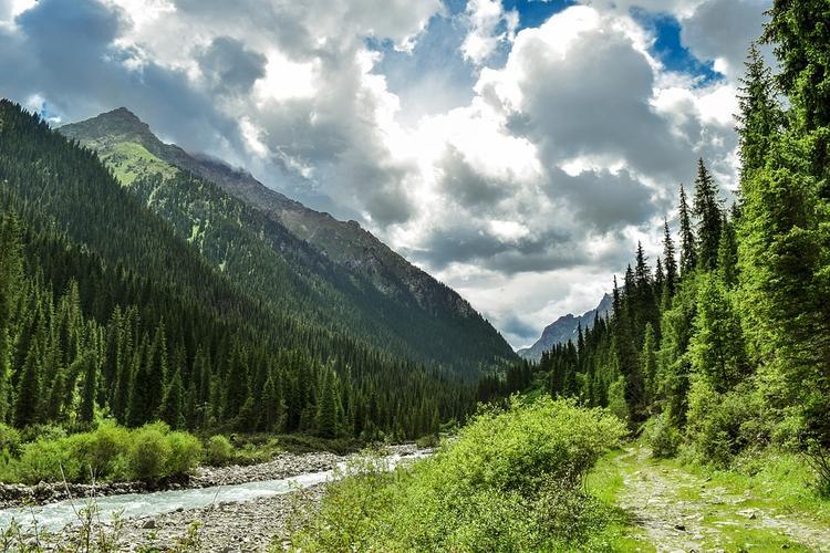 Родные Алибасова рассматривают вариант его реабилитации в санатории в горах Казахстана