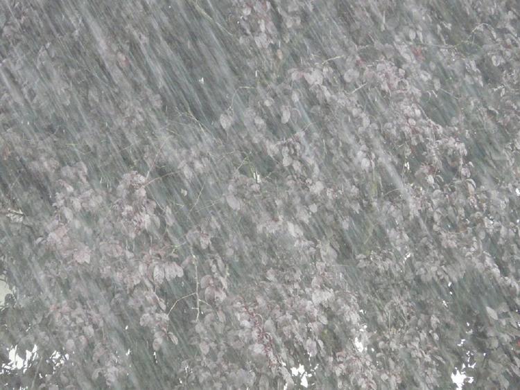 В Японии из-за ливней эвакуированы порядка 110 тысяч человек