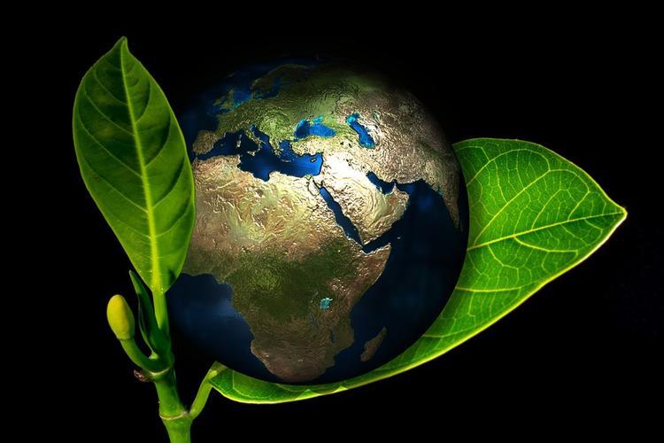 В понедельник всё человечество провалилось в экологическую долговую яму