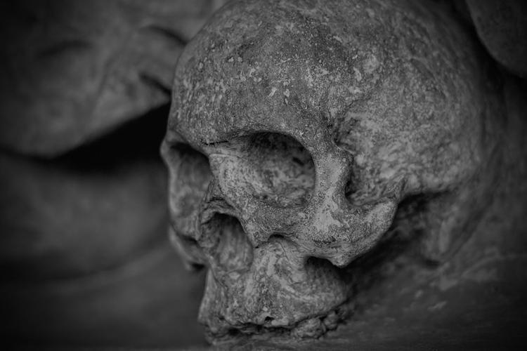 СМИ: у остановки на МКАД обнаружили скелет человека