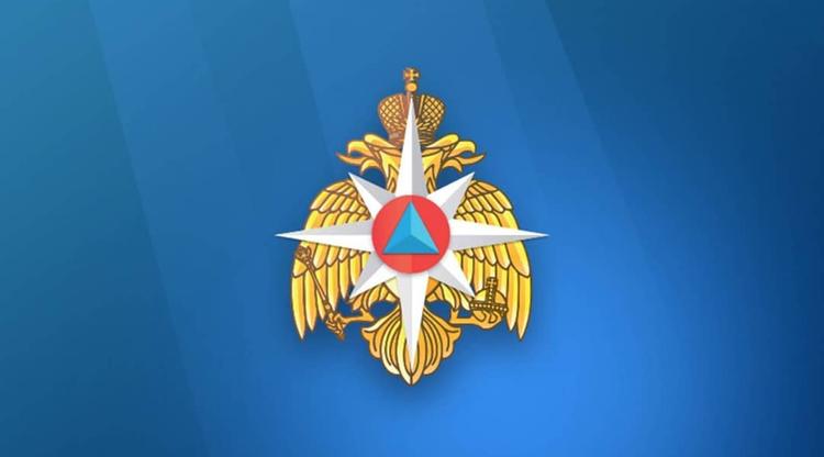 ДТП в Воронежской области привело к гибели четырёх человек