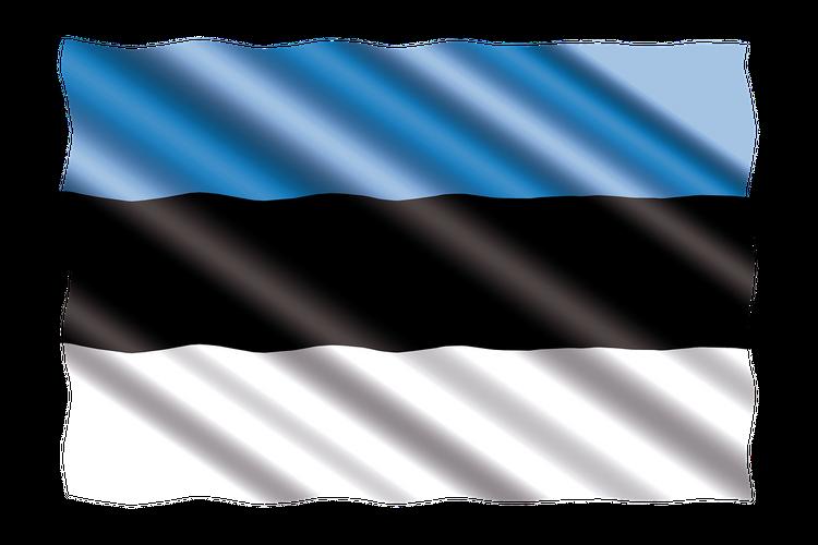 В Госдуме заявили, что Вторая Мировая война для Эстонии не начиналась