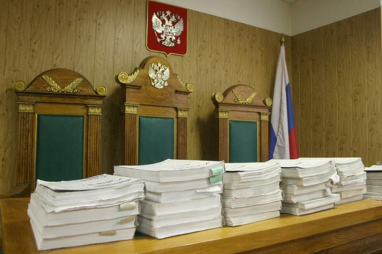 Промышлявшей вымогательством и воровством многодетной матери из Омска дали 22 года