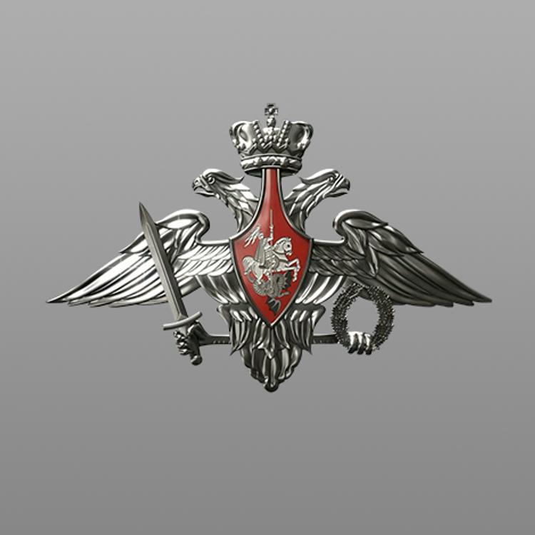 Заявление Минобороны России