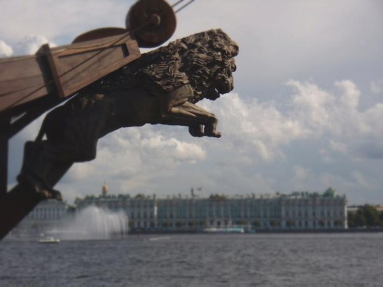 В Санкт-Петербурге на кладбище развесили фотографии политиков