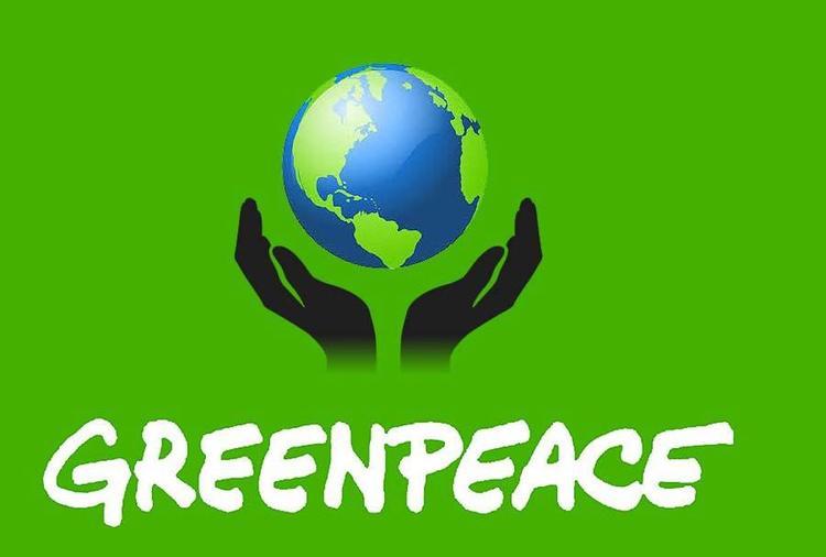 Greenpeace: как формировалась самая могущественная экологическая организация