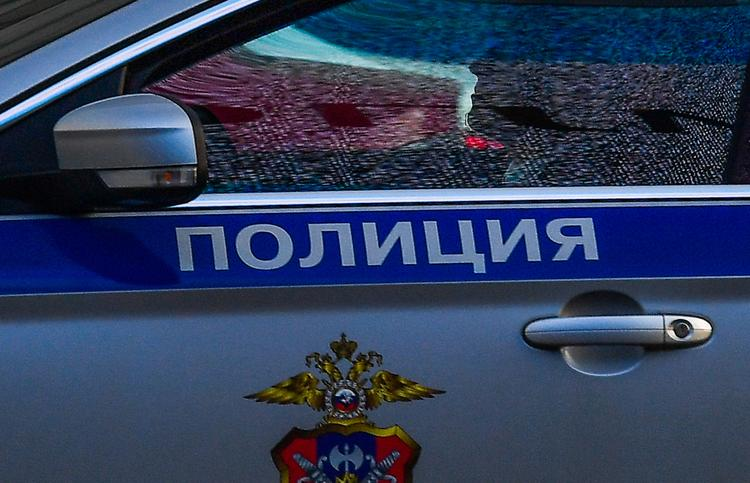 Знакомые рассказали о девушке, тело которой нашли в Домодедово