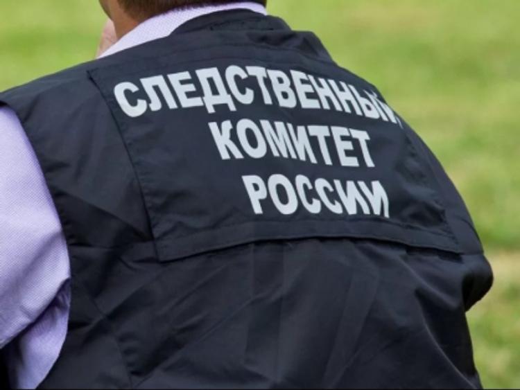 Дело  возбуждено по факту убийства несовершеннолетней студентки в Домодедово