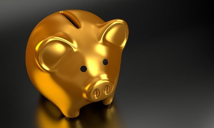 Экономист рассказал, что высокие зарплаты россиян не выгодны власти