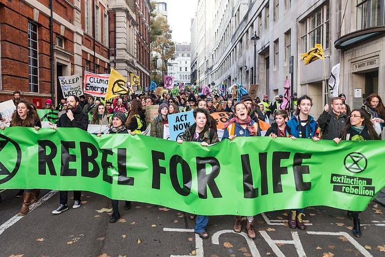 Экологические радикалы используют новую форму протеста в Европе
