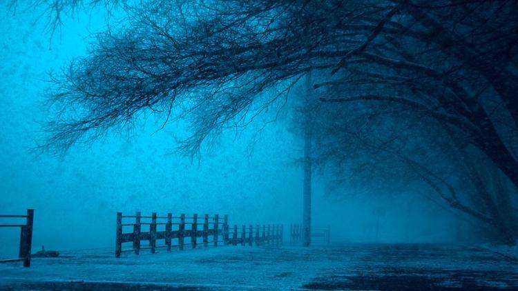 Ночь на понедельник стала самой холодной в Москве с начала осени