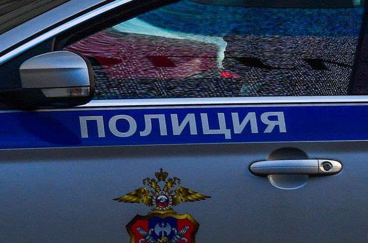 На одной из петербургских улиц нашли череп