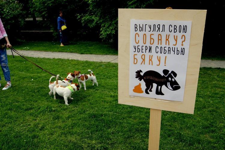 Собачник творит то, что никогда не сотворит друг собаки