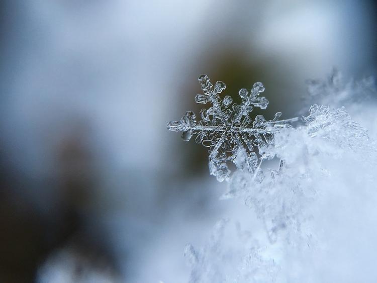 В пятницу в Москве будет идти мокрый снег