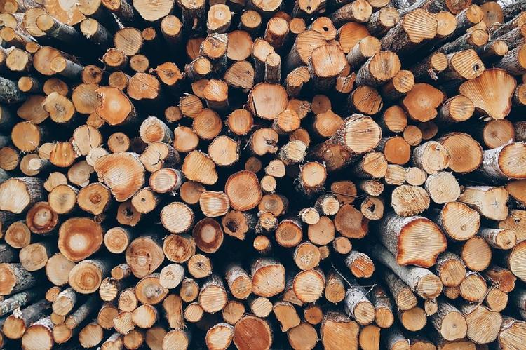 В России выросли цены на дрова